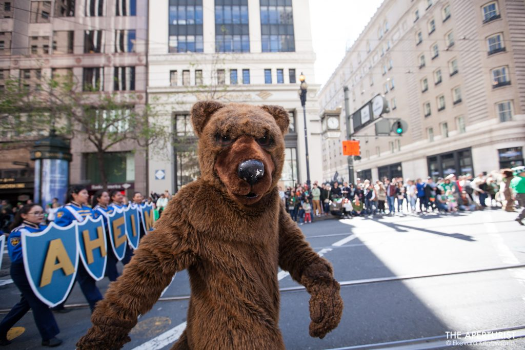Participant in a bear mascot joins the 168th annual San Francisco St. Patrick's Day Parade on Saturday, March 16, 2019, in San Francisco, Calif. (Photo by Ekevara Kitpowsong/Current SF)